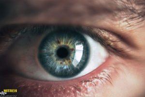 سیستم بینایی چشم انسان