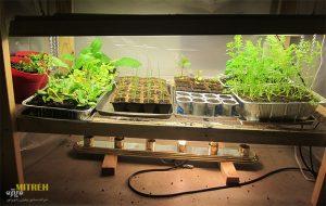 آموزش ساخت لامپ رشد گیاه